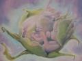 NEL FIORE, olio su tela, 2011, 50x50